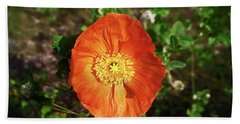 Beach Towel featuring the photograph Iceland Poppy by Sally Weigand