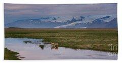 Iceland Sheep Reflections Panorama  Beach Sheet