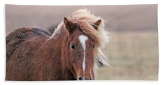Icelandic Horse 7116 Beach Towel