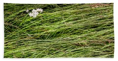 Beach Sheet featuring the photograph Icelandic Summer Flowers by KG Thienemann