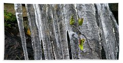 Beach Towel featuring the photograph Icicles by Sharon Talson