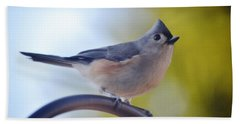 Tufted Titmouse Beach Sheet