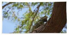 Iguana Climbing Up A Tree Trunk Beach Towel by DejaVu Designs