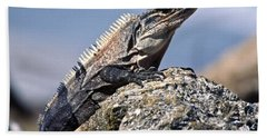 Beach Towel featuring the photograph Iguana by Sally Weigand