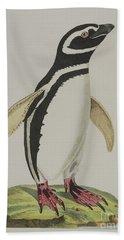Illustration Of A Penguin Beach Towel