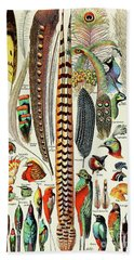 Illustration Of Feathers And Birds  Beach Towel