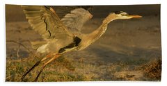 I'm Out Of Here Wildlife Art By Kaylyn Franks Beach Towel