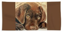 I'm Sorry - Chocolate Lab Puppy Beach Sheet by Julie Brugh Riffey