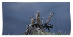 Stump Chambers Lake Hwy 14 Co Beach Towel