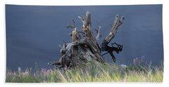 Stump Chambers Lake Hwy 14 Co Beach Sheet