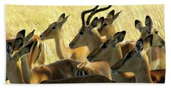 Impalas In The Plains Beach Towel