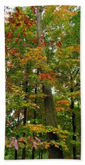 Beach Sheet featuring the photograph In The Height Of Autumn by Joan  Minchak