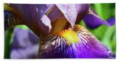 In The Purple Iris Beach Towel