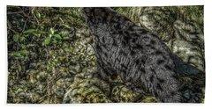 In The Shadows Black Bear Beach Sheet
