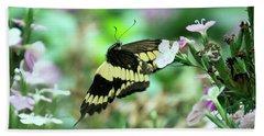 Incoming Butterfly Beach Sheet