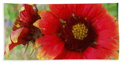 Indian Blanket Flowers Beach Sheet