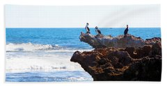 Indian Ocean Birds Resting On Rocks Beach Towel