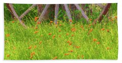 Beach Towel featuring the photograph Indian Paintbrush Flowers by Tom Singleton
