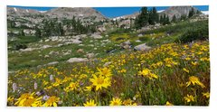 Indian Peaks Summer Wildflowers Beach Sheet