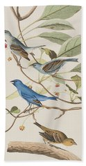 Indigo Bird Beach Towel by John James Audubon