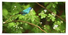 Indigo Bunting And Black Berry Blooms Beach Sheet by Darren Fisher