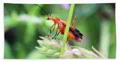 Insect Beach Towel