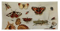 Insects, Shells And Butterflies Beach Towel