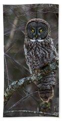 Intensity - Great Gray Owl Beach Towel