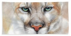 Beach Towel featuring the drawing Intensity - Mountain Lion - Puma by Peter Williams