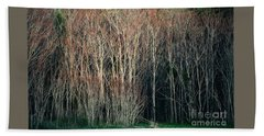 Into The Forest  Beach Towel by Christy Ricafrente