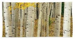Beach Towel featuring the photograph Into The Forest by Gary Lengyel