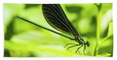 Iridescent Green And Blue Dragonfly Profile Beach Towel