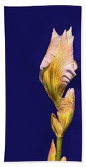 Iris Beginning To Bloom #g0 Beach Sheet by Leif Sohlman