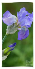 Iris Blue Beach Towel