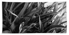 Iris Foliage Bw Beach Towel