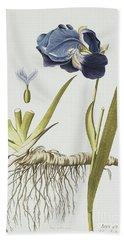 Iris Germanica Beach Towel