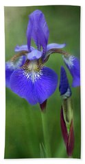 Beach Towel featuring the photograph Iris by Jacqui Boonstra