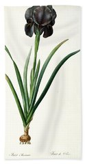 Iris Luxiana Beach Towel by Pierre Joseph  Redoute