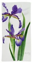 Iris Monspur Beach Towel by Anonymous