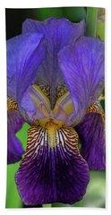 Iris Purple 2 Beach Towel