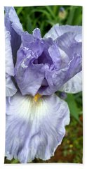 Beach Towel featuring the photograph Iris Up Close by Robert G Kernodle
