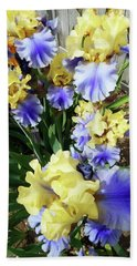 Irises 11 Beach Towel