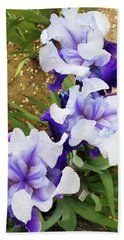 Irises 14 Beach Towel