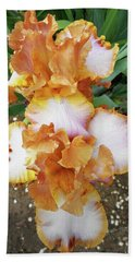 Irises 16 Beach Towel