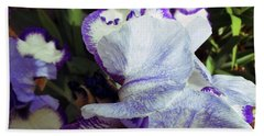 Irises 17 Beach Towel