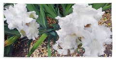 Irises 2 Beach Towel