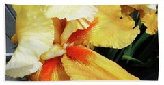 Irises 22 Beach Towel