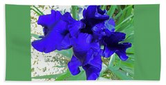 Irises 3 Beach Towel