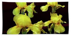 Beach Towel featuring the photograph Irises Yellow by Jasna Dragun