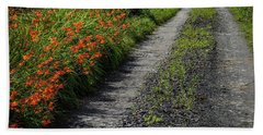 Beach Towel featuring the photograph Irish Country Road Lined With Wildflowers by James Truett